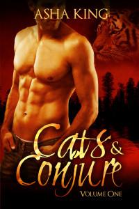 Cats & Conjure Vol I