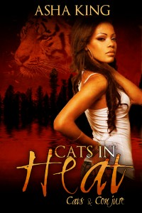 CatsinHeat_Kindle