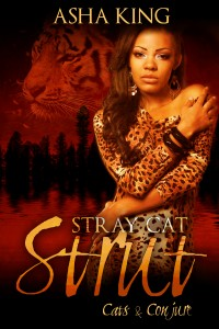 StrayCatStrut-Kindle